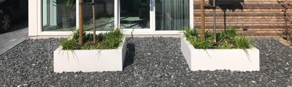 Lupine plantenbakken