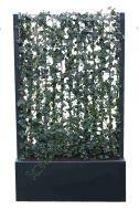 Polyester plantenbak met kant en klaar haag