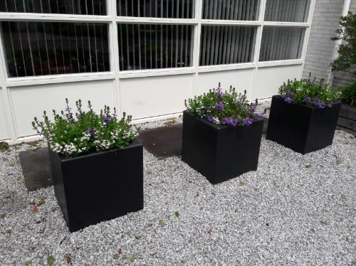Polyester plantenbakken 50x50x50 cm.