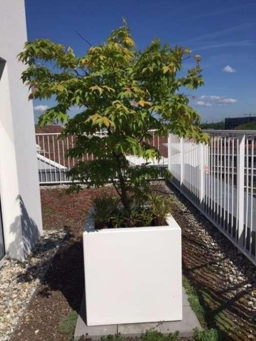 Polyester plantenbak 50x50x50 cm zuvier wit (ral 9010)