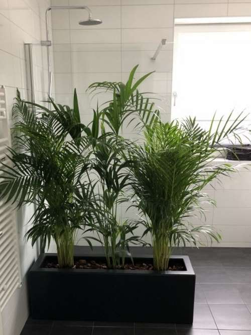 Polyester plantenbak 120x30x40 cm antraciet-zwart (ral 7021)