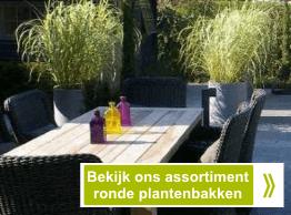 Grote polyester plantenbakken cilinder